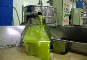 aceite-de-oliva-procesado